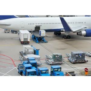 Компания Авуар-Дельта теперь предоставляет услуги по таможенному декларированию грузов