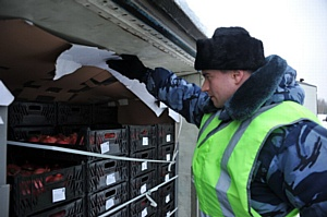 Смоленскими таможенниками пресечен ввоз в Россию 57 тонн санкционных товаров