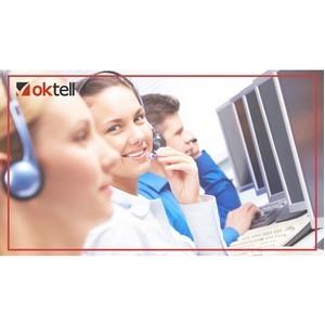 Как Oktell позволил ГБУ СО «ИнЭС» решать 85% запросов на первой линии?