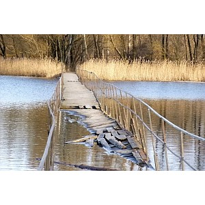 Белгородские активисты Народного фронта призывают власти восстановить мост в Ракитном