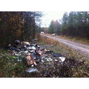 Активисты ОНФ в Коми обнаружили крупную свалку у реки Вычегда в Усть-Вымском районе