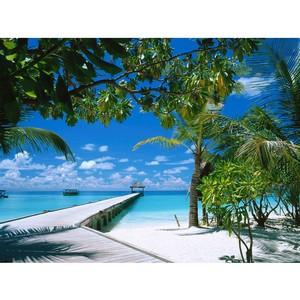 Лёгкий способ полететь на Мальдивы