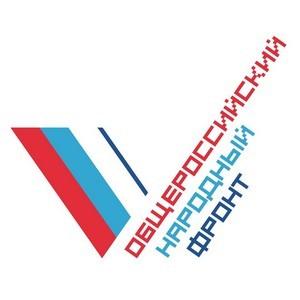 Томские активисты ОНФ провели познавательную акцию для детей «Гордо реет флаг России»