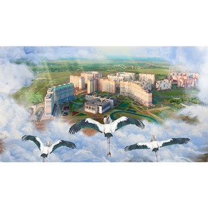 «Метриум Групп»: 52% сделок с новостройками Новой Москвы сосредоточены в 5 комплексах