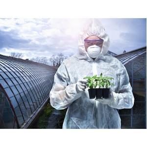Человек разумный или «ГМО-сапиенс?»