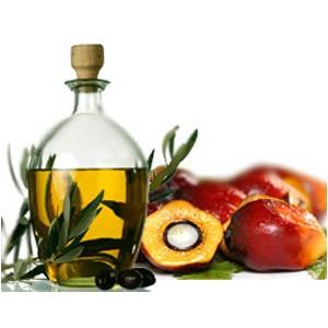 Смесь пальмового и соевого масел – полезная альтернатива трансжирам