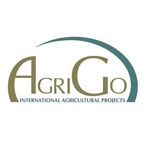 AgriGo стала генеральным подрядчиком строительства свинокомплекса в Беларуси