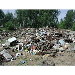 В Воронежской области на землях сельхозначения появилась свалка