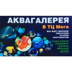 В Екатеринбурге открылся Океанариум «Аквамир»!