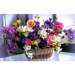 «Энфорта» повысила эффективность работы сотрудников «Цветочного региона»