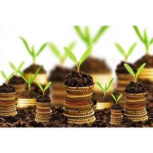 Особые формы финансирования инвестиционных проектов