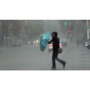 Кузбасские энергетики переходят на режим повышенной готовности в связи с непогодой