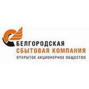 982 тыс. рублей заплатили белгородцы на сайте ОАО «Белгородэнергосбыт»