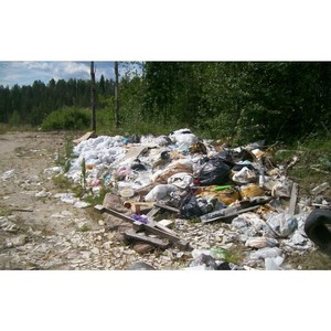 Благодаря проекту ОНФ «Генеральная уборка» в лесу под Петрозаводском ликвидирована свалка