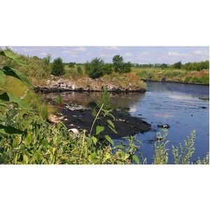 ОНФ выявил экологические нарушения в районе полигона «Зубчаниновка» в Самаре
