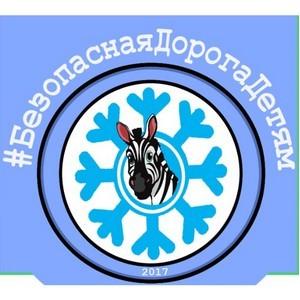 В 9 регионах Российской Федерации пройдет массовый флэш-моб по безопасности дорожного движения.