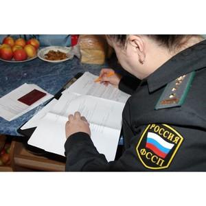 В Томске взысканы первые суммы по алиментым платежам рамках акции «В новый год - без долгов»