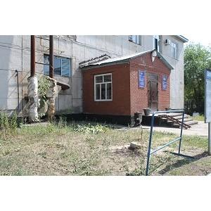 Активисты ОНФ обратились к главе Оренбурга по факту вырубки десятков деревьев