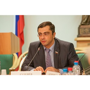 Владимир Гутенев: контрольно-надзорная деятельность масштабна, но не эффективна