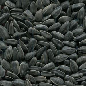 Глава КФХ Каширского района неправильно хранил зерно
