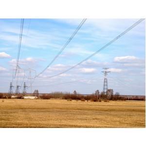 ФСК ЕЭС расчистила от камыша энерготранзит между Омской и Новосибирской областями