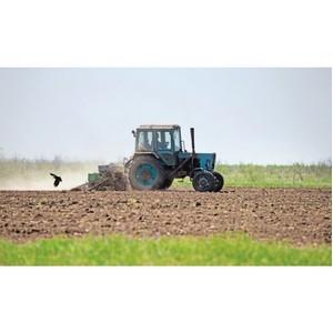 В Ростовской области полным ходом идут весенне-полевые работы