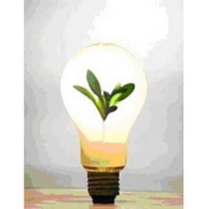 Япония стала островом экономии в мире растущего потребления энергии