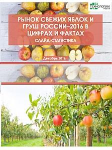 Российские садоводы собрали на 7% больше плодов и ягод в 2016 году