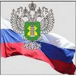 О командировании сотрудников Управления Россельхознадзора по Воронежской области
