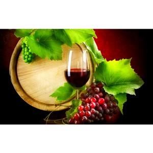 В ассортименте Palais Royal появилось вино-долгожитель