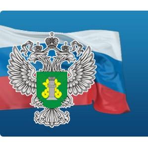 О повреждении защитного лесного насаждения предпринимателем КФХ Пономаревым