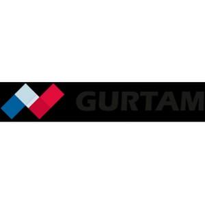 Вторая региональная практическая конференция партнеров Gurtam в Киеве