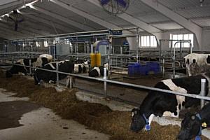 ДеЛаваль запустила еще две системы VMS на ферме в Республике Татарстан