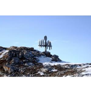 По инициативе ОНФ в Ненецком округе будет создан национальный парк на острове Вайгач