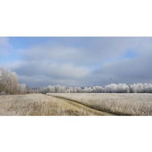 Загородная недвижимость Серпуховского района
