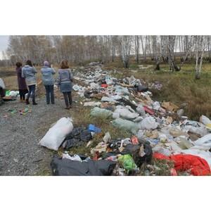 В Зауралье будущие экологические инспекторы провели рейд в рамках проекта ОНФ «Генеральная уборка»