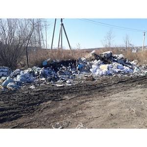 Активисты ОНФ в Амурской области продолжают работу по проекту «Генеральная уборка»