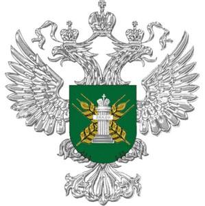 СХА «Ярковская» карантинные фитосанитарные обследования не проводила
