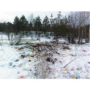 Активисты ОНФ в Ивановской области добиваются устранения стихийной свалки на землях лесного фонда