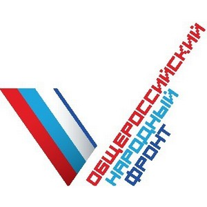 Томские активисты ОНФ проводят мониторинг благоустройства детских площадок