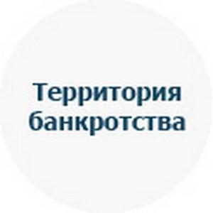 """Группа компаний """"БанкроТерра"""" начала банкротство Индивидуального предпринимателя в Брянской области."""