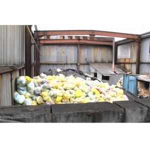 Активисты ОНФ настаивают на новой проверке надзорными органами свалки медицинского мусора в Кургане