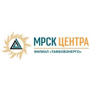 В филиале ОАО «МРСК Центра» - «Тамбовэнерго» рассказали о дополнительных услугах