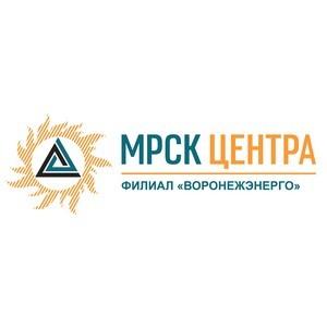 МРСК Центра участвует в проекте модернизации уличного освещения в муниципалитетах Воронежской области