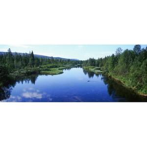 Ramboll приобщилась к мировой элите рынка консалтинга в сфере экологии