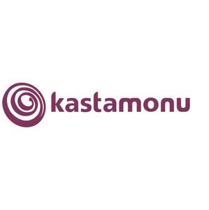 Kastamonu: рынок плит МДФ в России начинает восстанавливаться