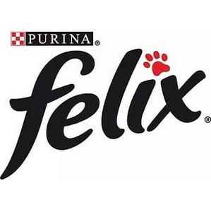 Felix® приглашает самых находчивых на квест в «Клаустрофобию»