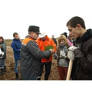 «Савинский цементный завод» провел второй этап экологической акции «Посади дерево – помоги планете!»
