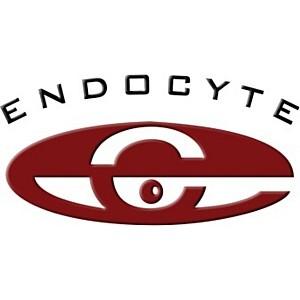 Merck и Endocyte сообщают о принятии к рассмотрению заявок на разрешение реализации винтафолида