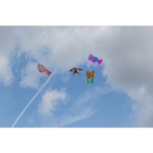 В Москве состоялся фестиваль воздушных змеев «ЛеТатлин №6 »